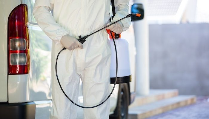 Certified Pest inspection in Regina by Effective Pest Control