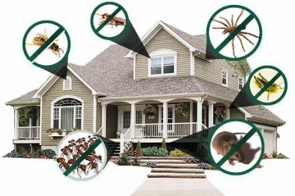 Best Residential Pest Control near regina