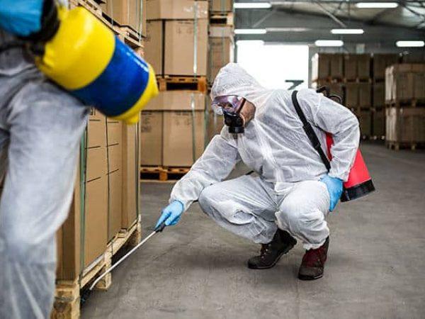 commercial pest control Regina, SK