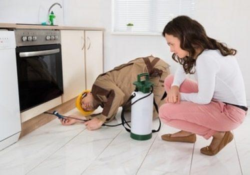 Residential Pest Control Regina